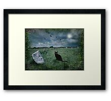 Cornish Black Cat Framed Print