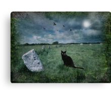 Cornish Black Cat Canvas Print