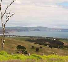 looking towards Lady bay and Rapid bay in the back ground  by janfoster