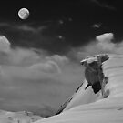 Moonrise Over Cornice by Wayne King