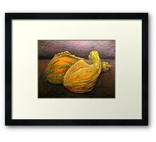 Nested Squash Framed Print