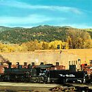 Chama, New Mexico Railyard  !  by Paul Albert