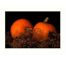 Pumpkins in Waiting Art Print