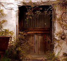 Door #7 by djscat