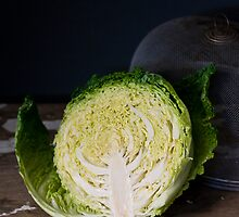 Savoy Cabbage by Ilva Beretta