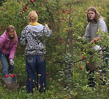 My children in my apples plantation by Antanas