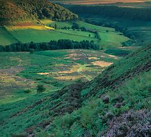 'Heathered Horcum' by Jon Brock