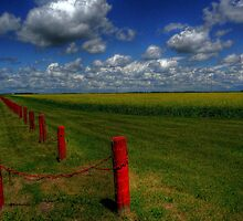 Prairie Splendour by Larry Trupp