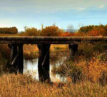 Train Trestle Bridge by TracyL72