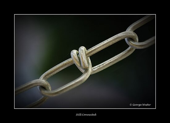 Still Connected by George Wester