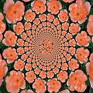 A Circle Of Roses by Linda Miller Gesualdo