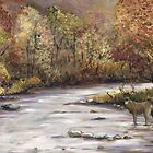 Fall Whitetail Deer by Charlotte Yealey