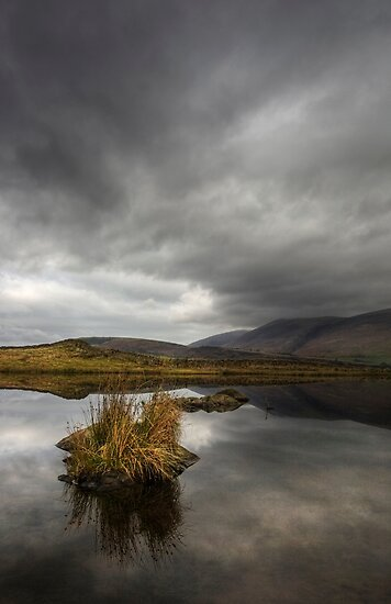 Tewit Tarn #1 by David Robinson