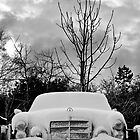 Winter Weather by sunnykalsi