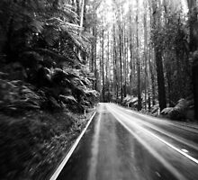 The Black Spur by bonsta