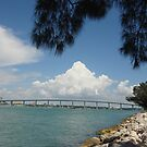 Sand Key Bridge by Sherry  Williamson