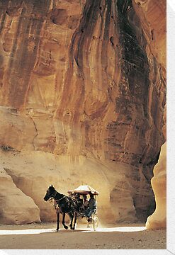 Cart in Siq, Petra, Jordan by Petr Svarc