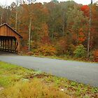 Catoosa Ridge covered bridge by kathy s gillentine