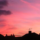 Red sky at night, neighbour take flight by darthsy