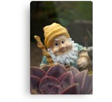 Sunnyboy the Garden Gnome Metal Print
