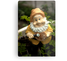 Painty the Garden Gnome Metal Print