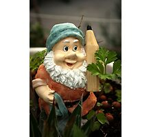 Doodlethumb the Garden Gnome Photographic Print