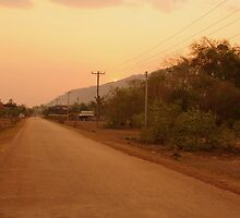 The Dusty Road - Champasak, Laos by timstathers