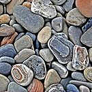 Pebbles by Curtis  Sheppard