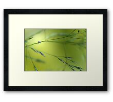 Just about hanging in there Framed Print
