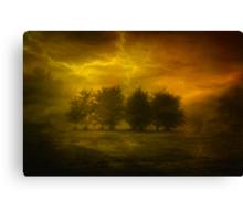 Thunderous  Canvas Print