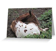 Bambi Impressions Greeting Card
