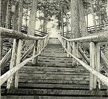 Jacob's Ladder - Nova Scotia Landmark by RobbScottArt