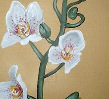 White Orchids by Cherie Roe Dirksen