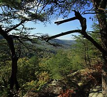 East Fork by kathy s gillentine