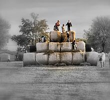 King Of The Hay by Jeff  Burns