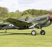 P40 Kittyhawk by airwolfhound