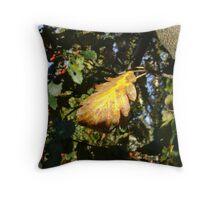 Autumn - yellow leaf, Burntisland 2009 Throw Pillow