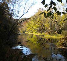 The Little Beaver Creek.. by JamieLA
