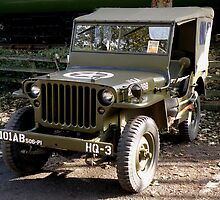 Jeep by Edward Denyer