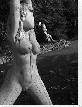 Wood Nymph, Denmark by Fin Gypsy