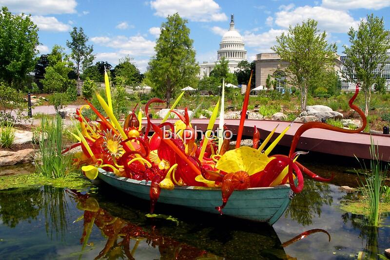 Botanical Garden Washington Dc By Bkphoto Redbubble
