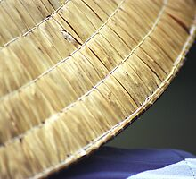 Detail of Typical Vietnamese Conical Hat  by Petr Svarc