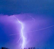 Lightning Strike - City Lights - Jett  II Color by Bo Insogna