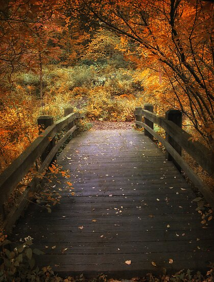 Splendor Bridge by Jessica Jenney