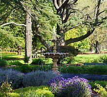 Fountain Garden.. by Kristina K