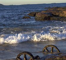 Waterscape: Windang Island Bogey wheels by Vanessa Pike-Russell