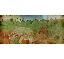Lost City of Elephants Earth Photographic Print
