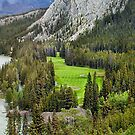 Banff Abbey Springs GC by Dave Nielsen