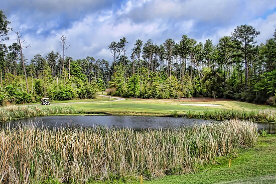 Biloxi Area Golf Course by Dave Nielsen