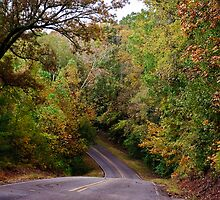 A Fall Drive by Phillip M. Burrow